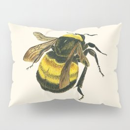 Vintage Scientific Bee Pillow Sham