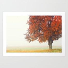 Foggy Autumn Art Print
