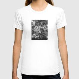 Dramatic London Tree Silhouette T-shirt