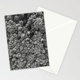 Forest from the bird view Stationery Cards