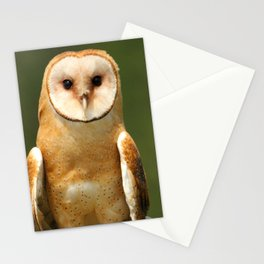 In her eyes Stationery Cards