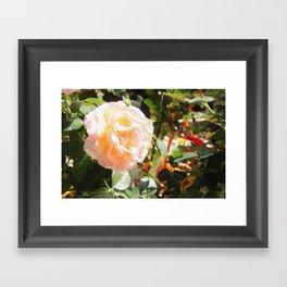 Roses are Pink Framed Art Print