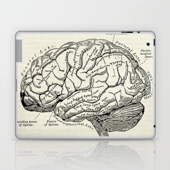 Vintage medical illustration of the human brain by oonaleevintageillustrations