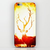 stag iPhone & iPod Skins featuring STAG by Chrisb Marquez