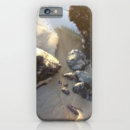 Rock Creatures iPhone Case