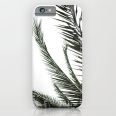 Palm Leaves 2 iPhone 6s Slim Case
