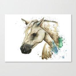 Palomino Horse - Sundance Canvas Print