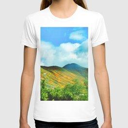 Super Bloom Lake Elsinore, CA 2019 T-shirt