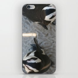 2 Penguins in South Africa iPhone Skin