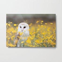 Field Owl Metal Print