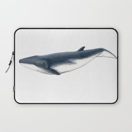 Bryde´s baby whale (Balaenoptera brydei) Laptop Sleeve