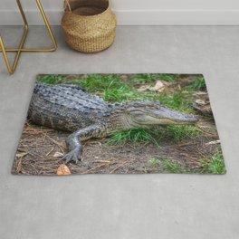 Alligator - Hello Darlin' Rug