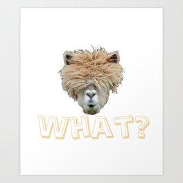 What? Alpaca Art Print