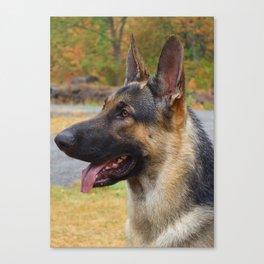 German Shepherd Dog Outdoor Portrait Canvas Print