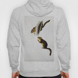 Douglas's Squirrel - John James Audubon Hoody