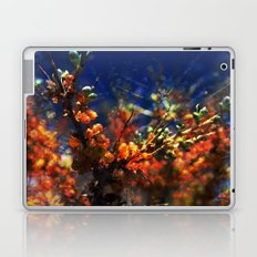 infinite fruits Laptop & iPad Skin