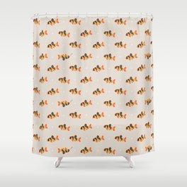 Clown loach Shower Curtain