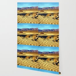 Death Valley Wallpaper