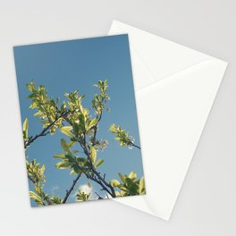 Growth / 2 Stationery Cards