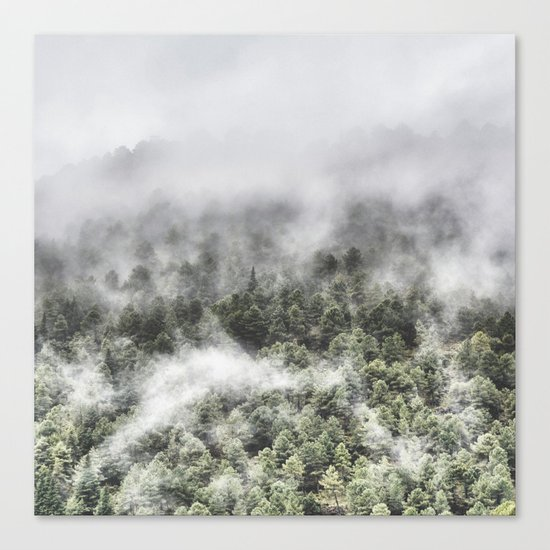"""""""Mountain light III"""". Wildderness. Mountains Canvas Print"""