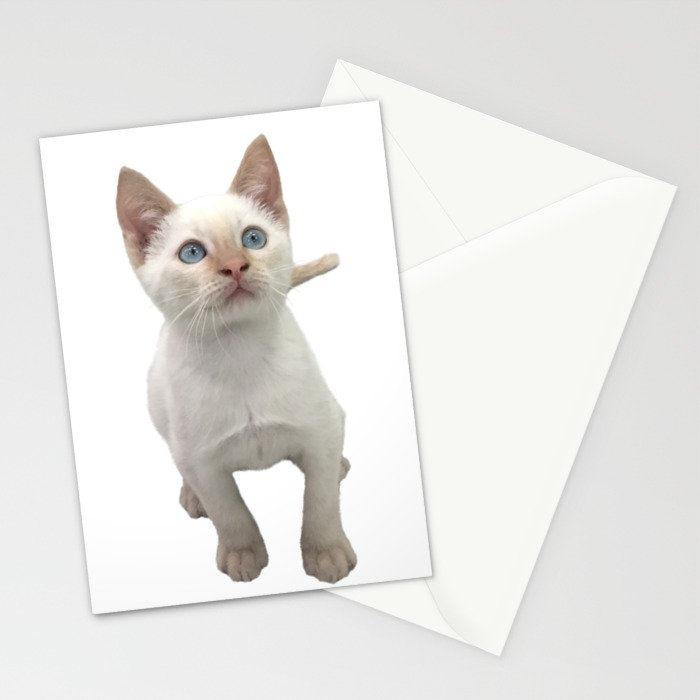 Flame Point Siamese Kitten Stationery Cards