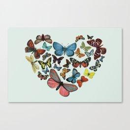 BUTTERFLY LOVE II Canvas Print