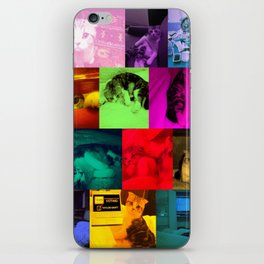 Meredith iPhone Skin