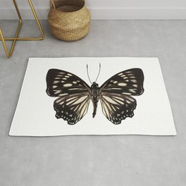 """Butterfly species Euripus nyctelius euploeoides """"Courtesan butterfly"""" Rug"""