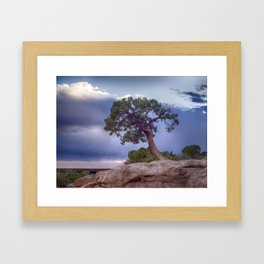 The Tree on the Edge Framed Art Print