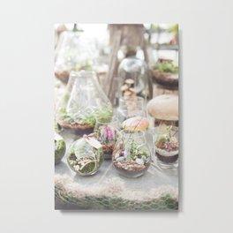 Terrariums Metal Print