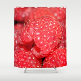 Red Raspberries Freshly Picked Shower Curtain