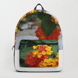 Macro Of Shrub Verbenas or Lantanas (Lantana Camara)  Backpack