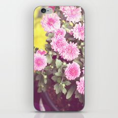 Vintage - Flower Pots iPhone & iPod Skin