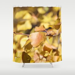 Late Fall Hawthorn Leaves Shower Curtain