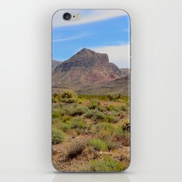 Painted Desert - II iPhone Skin