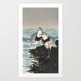 Japanese Woodcut - Coastal Birds Art Print