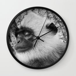 "Close-up ""black-faced"" Hanuman langurs Wall Clock"