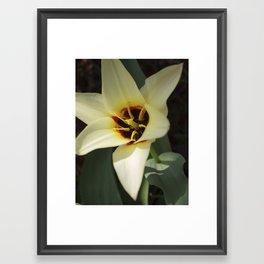 The White Flower Framed Art Print
