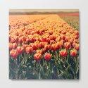 Tulips field #6 by julianarw