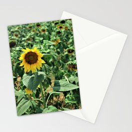 Flower No 6 Stationery Cards