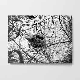 A Home In Chaos Metal Print