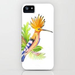illustration of tropical hoopoe bird iPhone Case