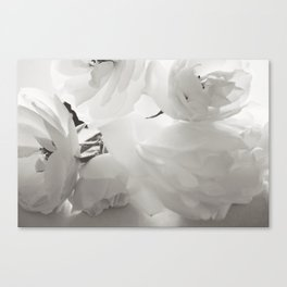 Soul of a real Dreamer Canvas Print