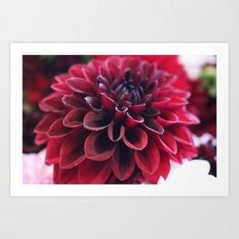 Hannah's Flower #2 Art Print