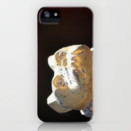 Mack iPhone Case