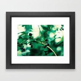 Bokeh Blueberries Framed Art Print