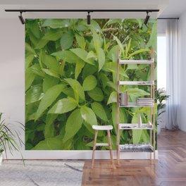 Greenery and leaf VII Wall Mural