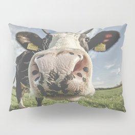 Inquisitive Cow Pillow Sham