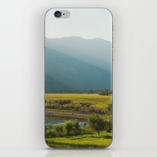 Wading Deer iPhone Skin