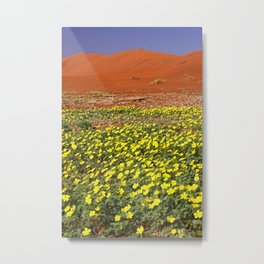 Flowers in the Namib desert, Namibia Metal Print